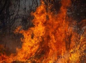 Homem que provocou incêndio florestal em Porto Nacional tem condenação confirmada