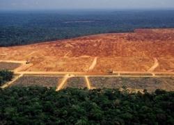 Nova Lei de Licenciamento Ambiental