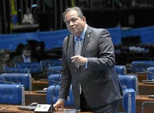 Substituto do Bolsa Família deve ficar pronto só em 2021, diz líder do governo