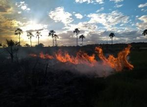 Naturatins intensifica ações de combate a incêndios em unidades de conservação