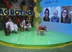 Organização e mercado da agricultura familiar é tema de painel na Agrotins 2021 100% Digital