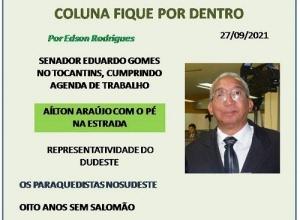 COLUNA FIQUE POR DENTRO
