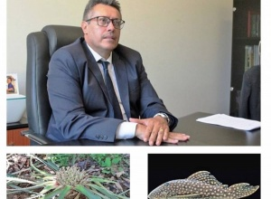 Governo do Tocantins inicia plano de conservação de espécies ameaçadas de extinção no Cerrado