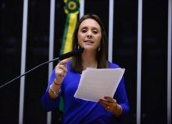 Reforma política coíbe emparelhamento da máquina, defende relatora
