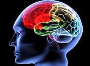 Artigo: O público o privado e o mal de Alzheimer