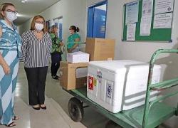 Governo do Tocantins entrega vacinas da CoronaVac para a Capital e divulga número de doses por município