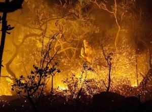 Recomendação do MPTO visa notificar imóveis e empreendimentos sobre monitoramento de focos queimadas e incêndios florestais